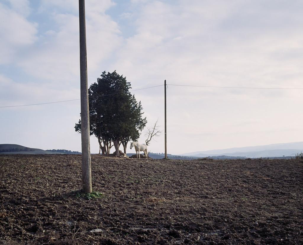 carlovigni-paesaggiprivati14b